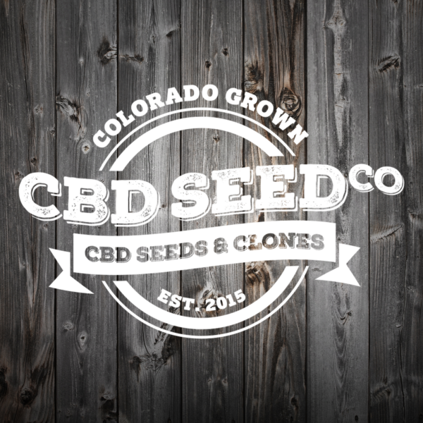 CBD Clones Colorado