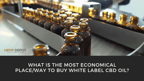 What Is the Most Economical Place/Way to Buy White Label CBD Oil?