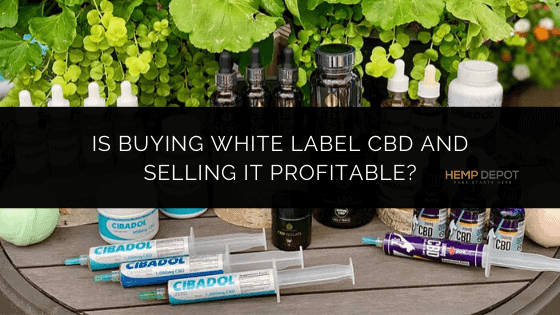 Is Buying White Label CBD and Selling it Profitable?
