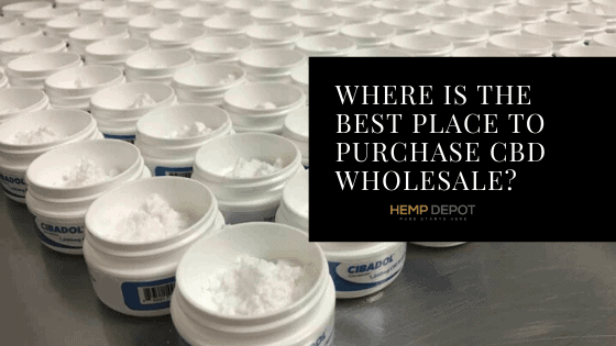 Where Is the Best Place to Purchase CBD Wholesale?