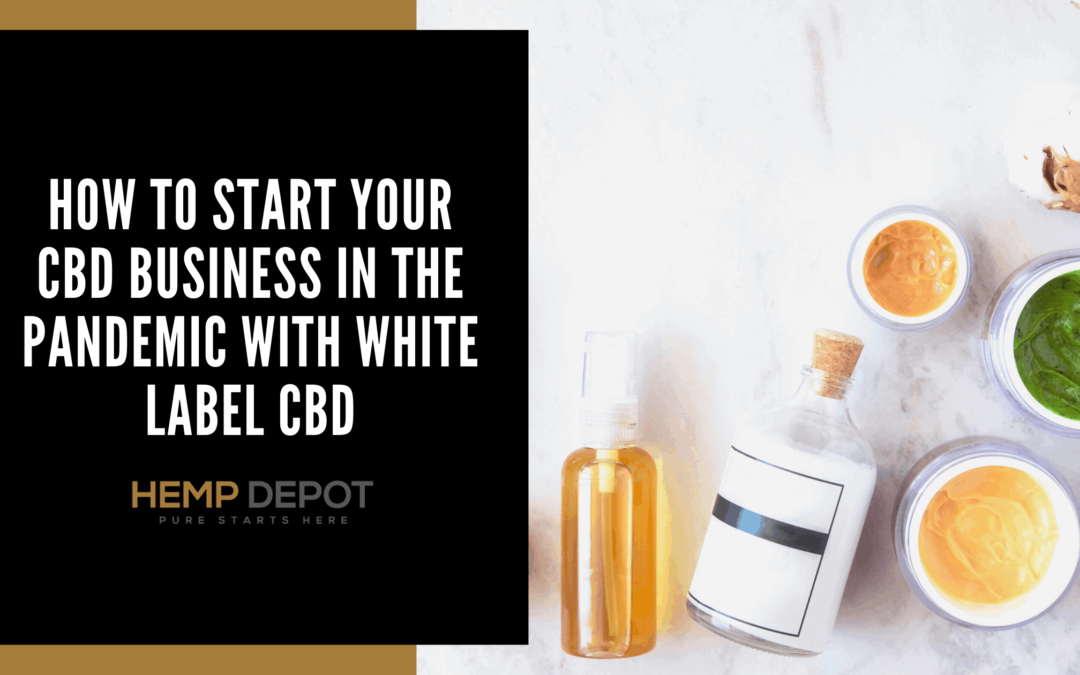 How to Start Your CBD Business In the Pandemic with White Label CBD